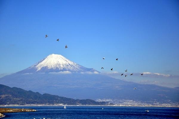三保から臨む富士山と駿河湾
