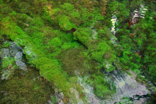池山水源01